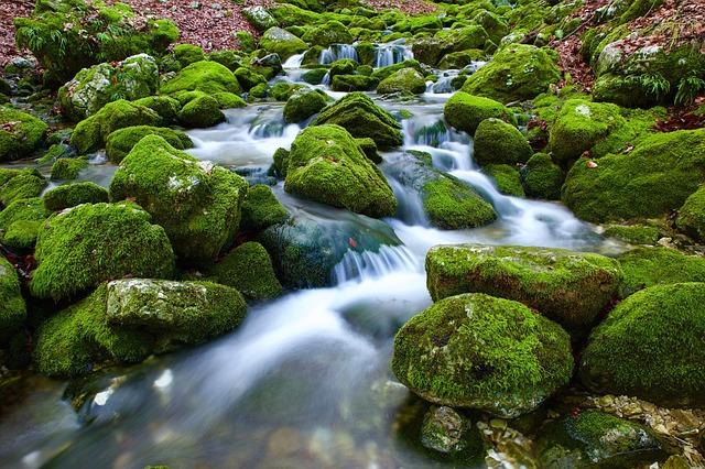 Gestion de l'eau, la base de la survie